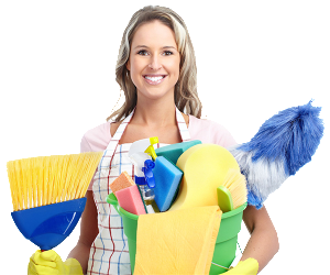 The-Cleaning-Business-Gold-Blueprint1